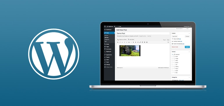 How to Publish Brightcove Video in WordPress