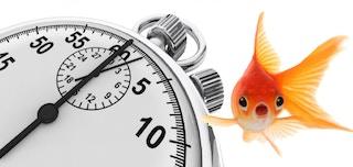 金魚に勝つ - ポータルのパワー