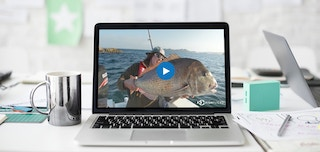 What A Catch! Australian Streaming Service FishFlicks Increases Video Viewing Time By 150%