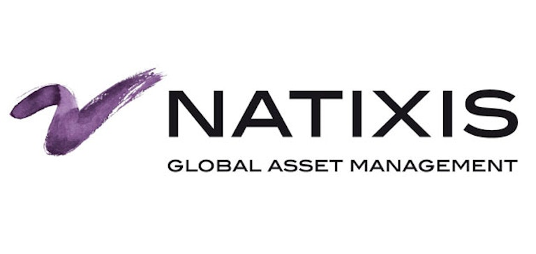 Case Study: Natixis Global Asset Management Promotes Educational Videos with Brightcove Video Cloud