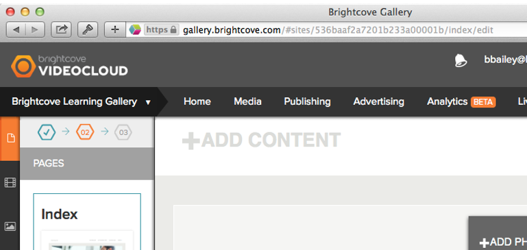 Getting Started with Brightcove Gallery